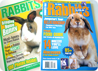 rabbitsusa.jpg